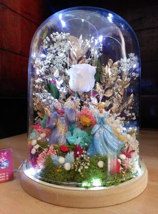 mágicas cúpulas Disney flores preservadas