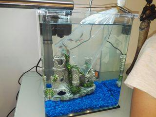 pecera, acuario de diseño.