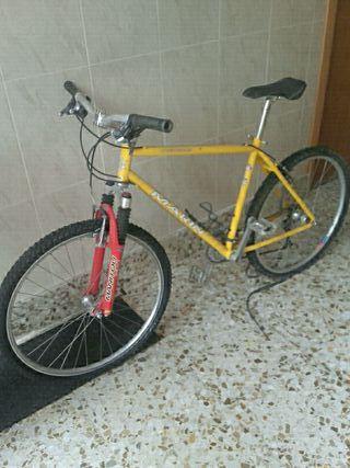 Bicicleta Muirwoods marin