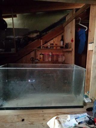 pecera de 180 litros