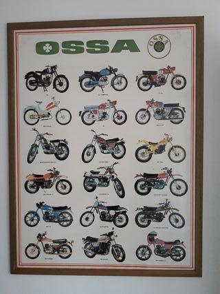 Poster Ossa