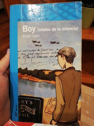 """libro """"Boy"""" de Roald Dahl"""