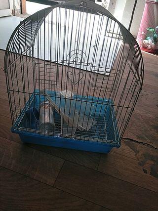 jaulas pájaros