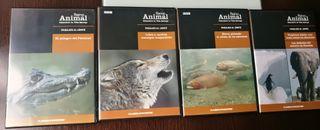 DVDs documentales reino animal