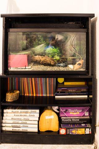 Mueble de acuario + acuario 80l