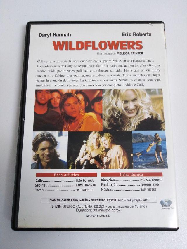 DVD wildeflowers