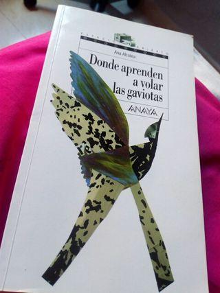 Donde aprenden a volar las gaviotas, Ana Alcolea