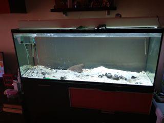acuario pecera 500l. OPORTUNIDAD