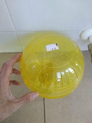 Bola, rueda hamster