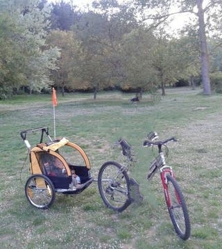 Remolque de bicicleta para niños - Jogger