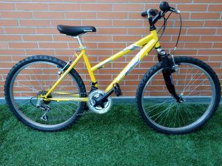 "Bici Boomerang Village II de 24"""