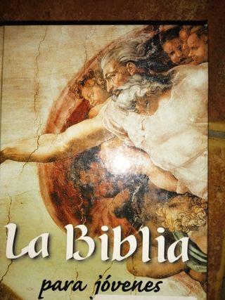 Biblia para jóvenes.