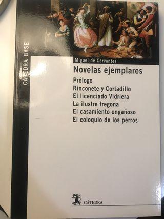 Novelas ejemplares -Miguel de Cervantes