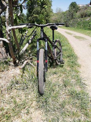 bicicleta downhill hydroform custom