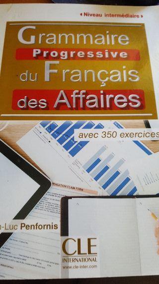 Grammaire progressive du Francais des Affaires