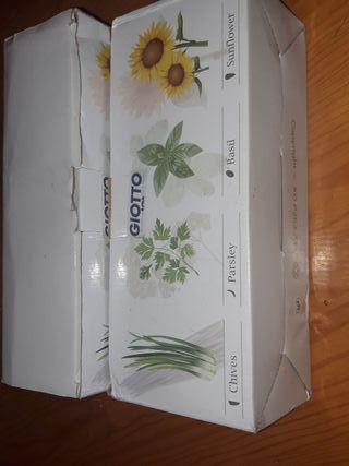 6 folreros con semillas x10€