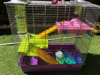 Jaula Hamster o roedores