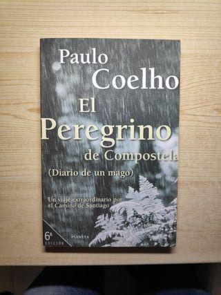 El peregrino de Compostela