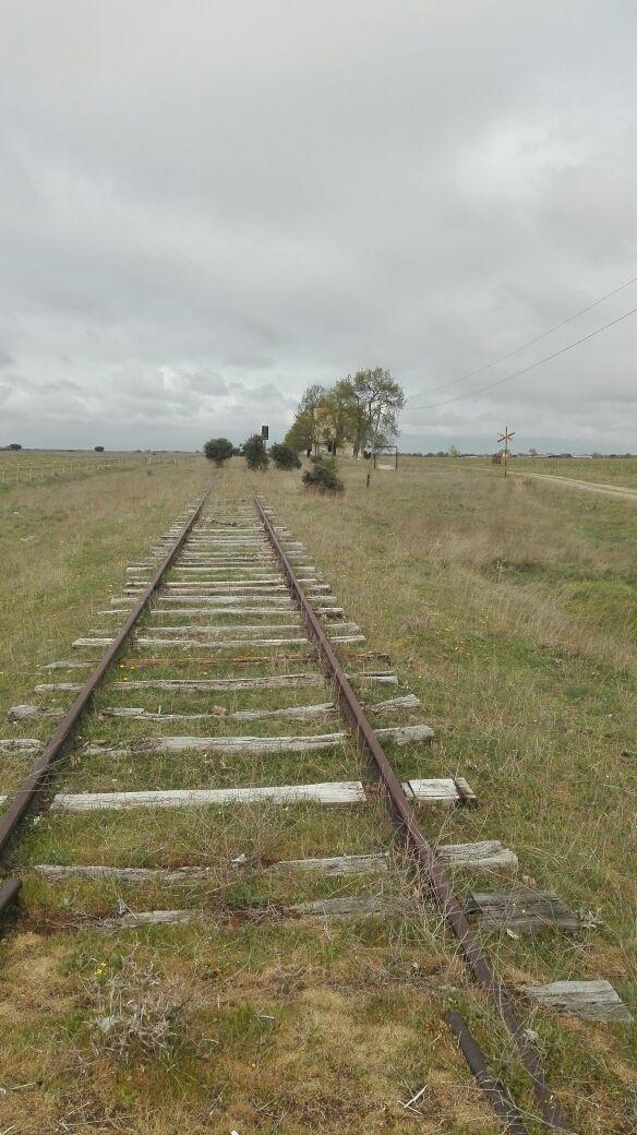 Antiguos tornillos de ferrocarril