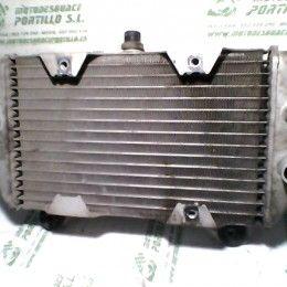 Radiador Honda Forza 250 (2007 - 2008)