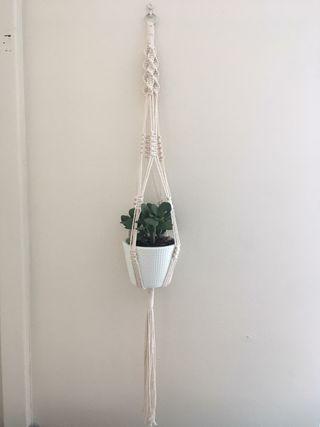 Macramé Plant hanger. colgador de plantas macrame