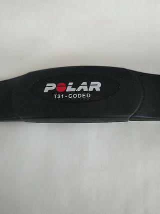 banda polar T31