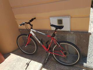 Bicicletas de carretera/montaña