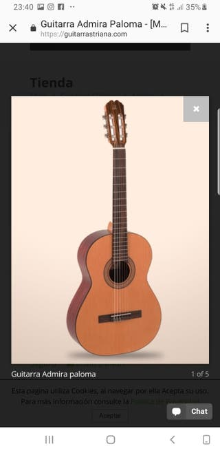Guitarra admira paloma sin uso