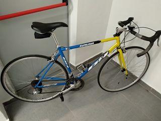 Bicicleta Carretera BH Gavia