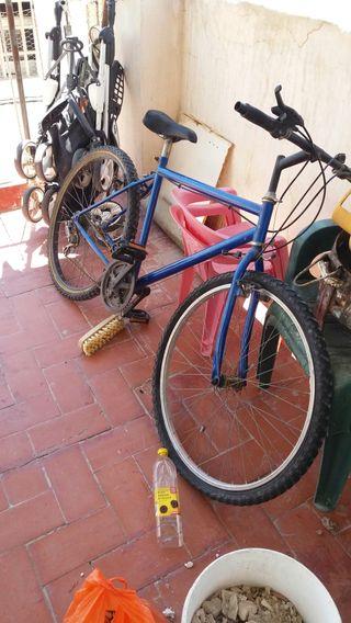 biciclita