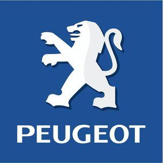 cambio Peugeot por Lada niva