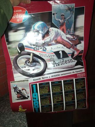 calendario avidesa 1981