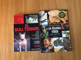 Libros Bull Terrier - Iguana Verde
