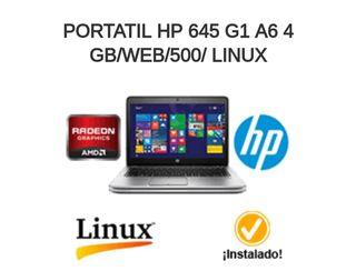 Ordenador Portátil Seminuevo HP 645 G1