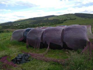 rollos de silo