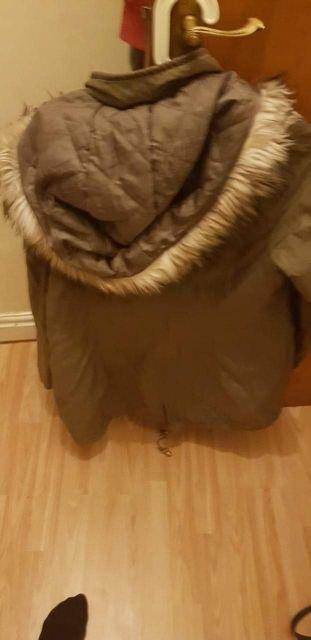 lispy coat