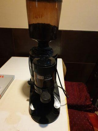 Moledor de cafe