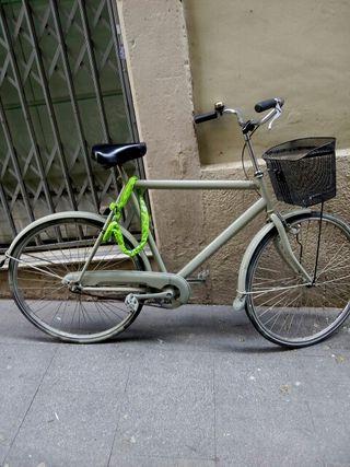 bici paseo grande