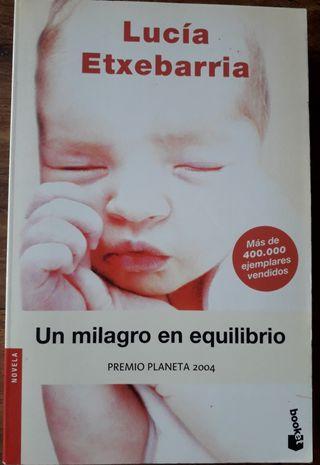 un milagro en equilibrio de Lucía Echevarría