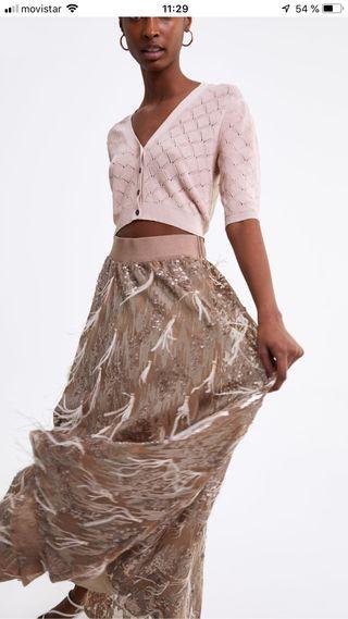 c2cb93745 Falda de Zara, Edición Limitada (Fiesta) de segunda mano por 100 ...
