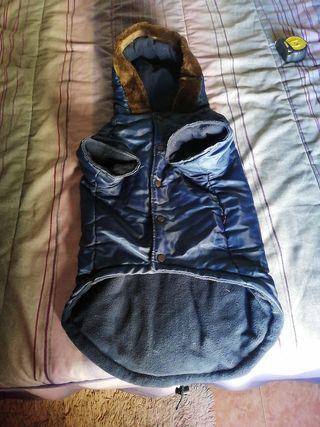 abrigo perro