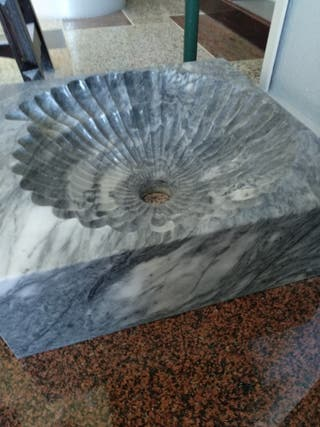 lavabo con forma de fósil interior