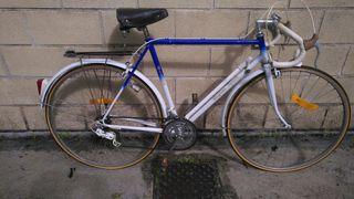 Bicicleta economica.