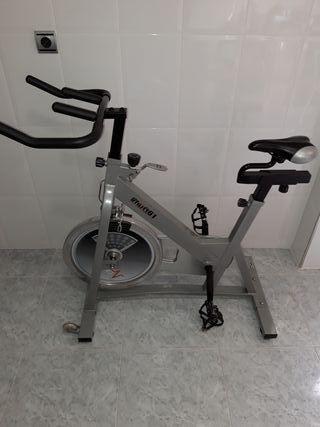 vendo bici de spinik