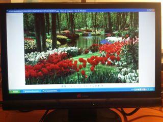 "Monitor 17"" LCD-TFT Yuraku"