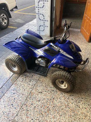 Se vende quads rieju Panther