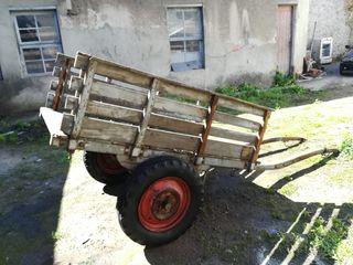 carro antiguo burro