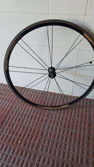 rueda rolf vector