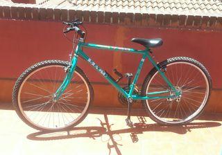 Bicicleta Riamo Y20
