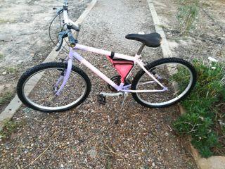 bicicleta mediana